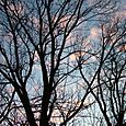 2004_1202wintersunrise0033_small